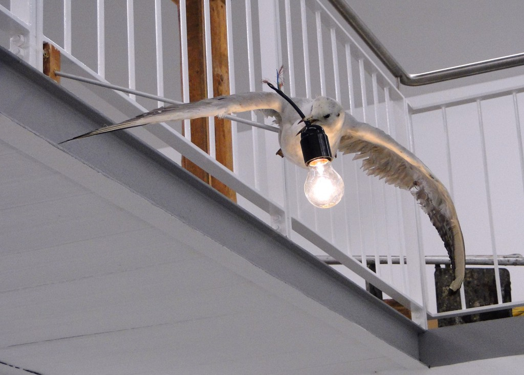 Electicity, 2010 (sea gull, bulb, electricity)